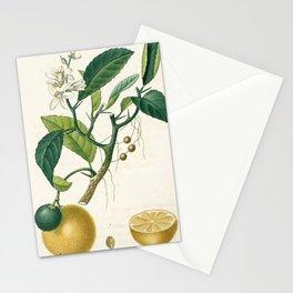 Lemon tree Vintage illustration Stationery Cards