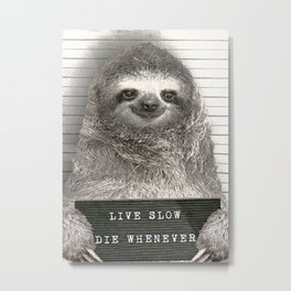 Sloth in a Mugshot Metal Print