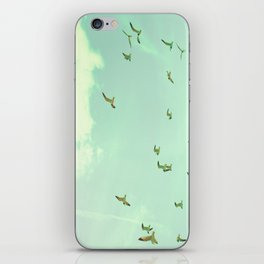 Waves in the Sky iPhone Skin