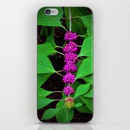 Purple Fruit Clusters iPhone Skin
