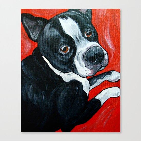 Boston Terrier Dog  Canvas Print