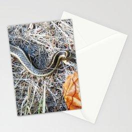 Adam's Adversary Stationery Cards