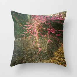 Chinese Red Bud  Throw Pillow
