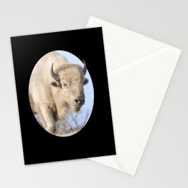 Emerging White Bison  Stationery Cards
