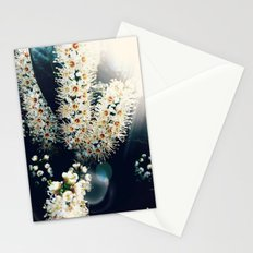 Sunlight On Laurel Blossoms Stationery Cards