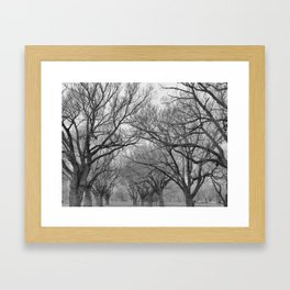 Hazy Sunday Framed Art Print