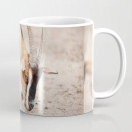 domesticated goats eating from sand Coffee Mug