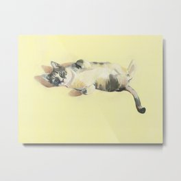 """Frankie - 9"""" x 12"""" Oil on Panel Cat Portrait Metal Print"""