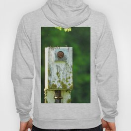 The Home is a Nest Hoody