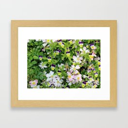 Cute Pansies and Pink and White Flowers Framed Art Print