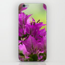 Beautiful  Brazilian flower 218  iPhone Skin