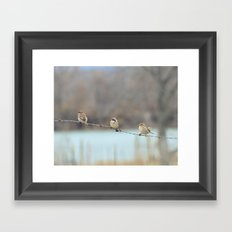 Birds On The Barb Wire Framed Art Print