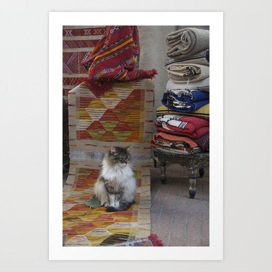 Marrakesh Cats III Art Print