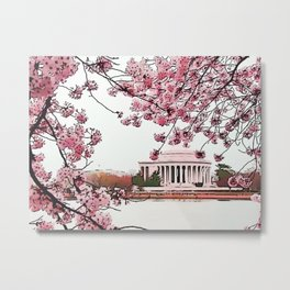 Jefferson Memorial Amid Cherry Blossoms Metal Print