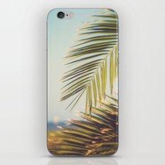 Island Time iPhone & iPod Skin