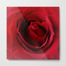 deep red rose Metal Print