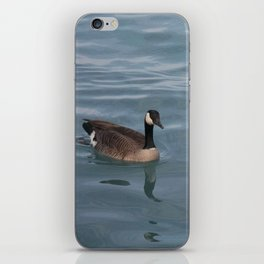 A Mate For Life iPhone Skin