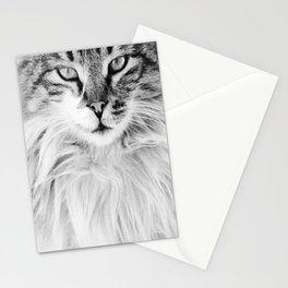 KEDİ Stationery Cards