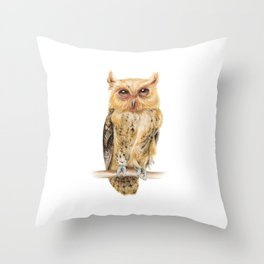 Animals | Owl Watercolour Print | Philippine Scops Owl | Painting Throw Pillow