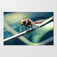 ruby Canvas Prints featuring Ruby by Faded  Photos