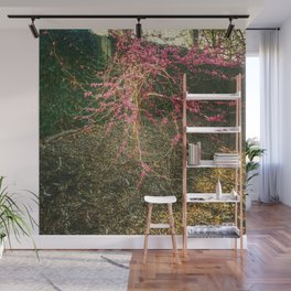 Chinese Red Bud  Wall Mural