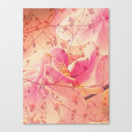Lightfull Orchid behind little Flowers Canvas Print
