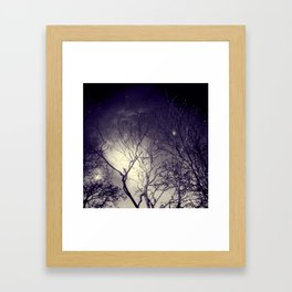 Mist in the Forest. Framed Art Print