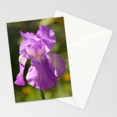 Iris 3109 Stationery Cards