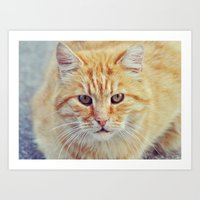 ginger Art Prints featuring Ginger by LindaMarieAnson