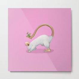 Yoga Rat, Day 3 Metal Print