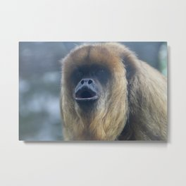 Howler Monkey 2 Metal Print