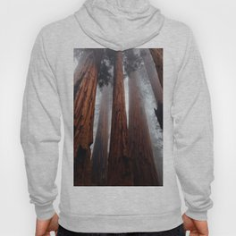 Woodley Forest Hoodie