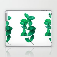 Green Leaves in White background Laptop & iPad Skin