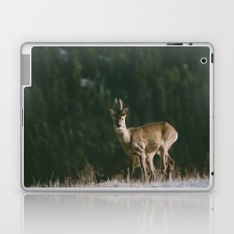 Hello spring! - Landscape and Nature Photography Laptop & iPad Skin
