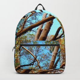 Madrone Backpack