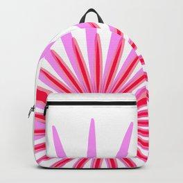Natural Descent Backpack