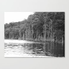 lonely shore III Canvas Print