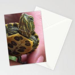 Baby red-eared slider turtle Stationery Cards