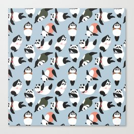 Pandas Swimmer Canvas Print