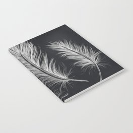 Chalk feather collection Notebook