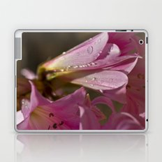 August Flowers Laptop & iPad Skin