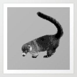 Greyscale Coati Art Print
