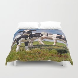 Young Holstein cows Duvet Cover