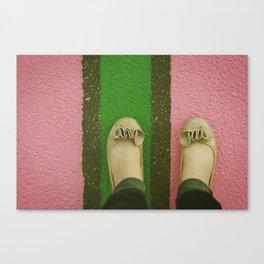 vintage pink & green Canvas Print