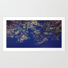 Navy branches  Art Print