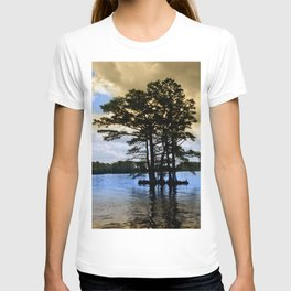 Cypress Trees T-shirt