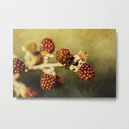 Wild berries #1 Metal Print