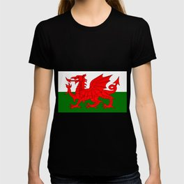 Welsh Dragon Flag T-shirt