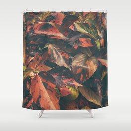 hojas rojas Shower Curtain