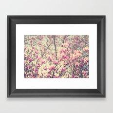 Magnolia Blossoms Early Spring Botanical Framed Art Print